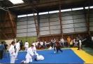 Fête du sport Septembre 2001 à Ploemeur 07